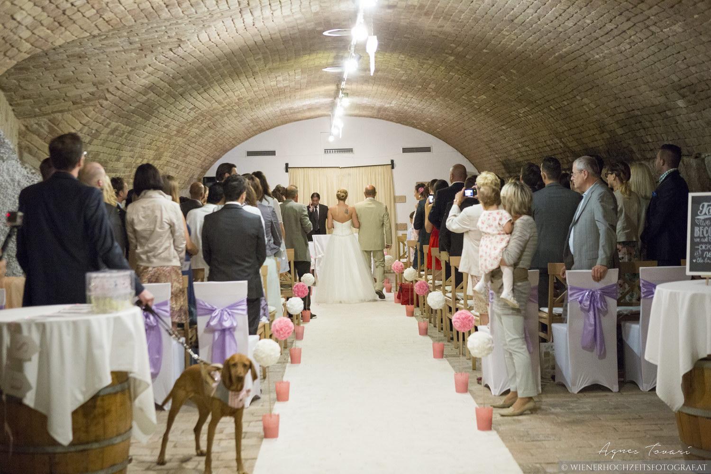 Hochzeitsfotografie Wien 6
