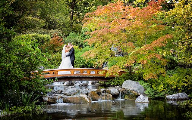 Hochzeitfotos in Wien Setagaya Park